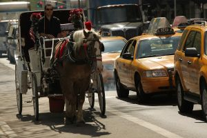 A horse drawn carriage waits to move outside of Central Park (Photo: Spencer Platt/Getty Images)