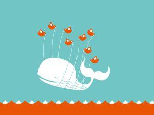 Can a Fail Whale shed tears?