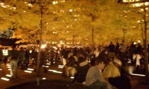 Protesters re-occupy Zuccotti Park on Nov. 15.