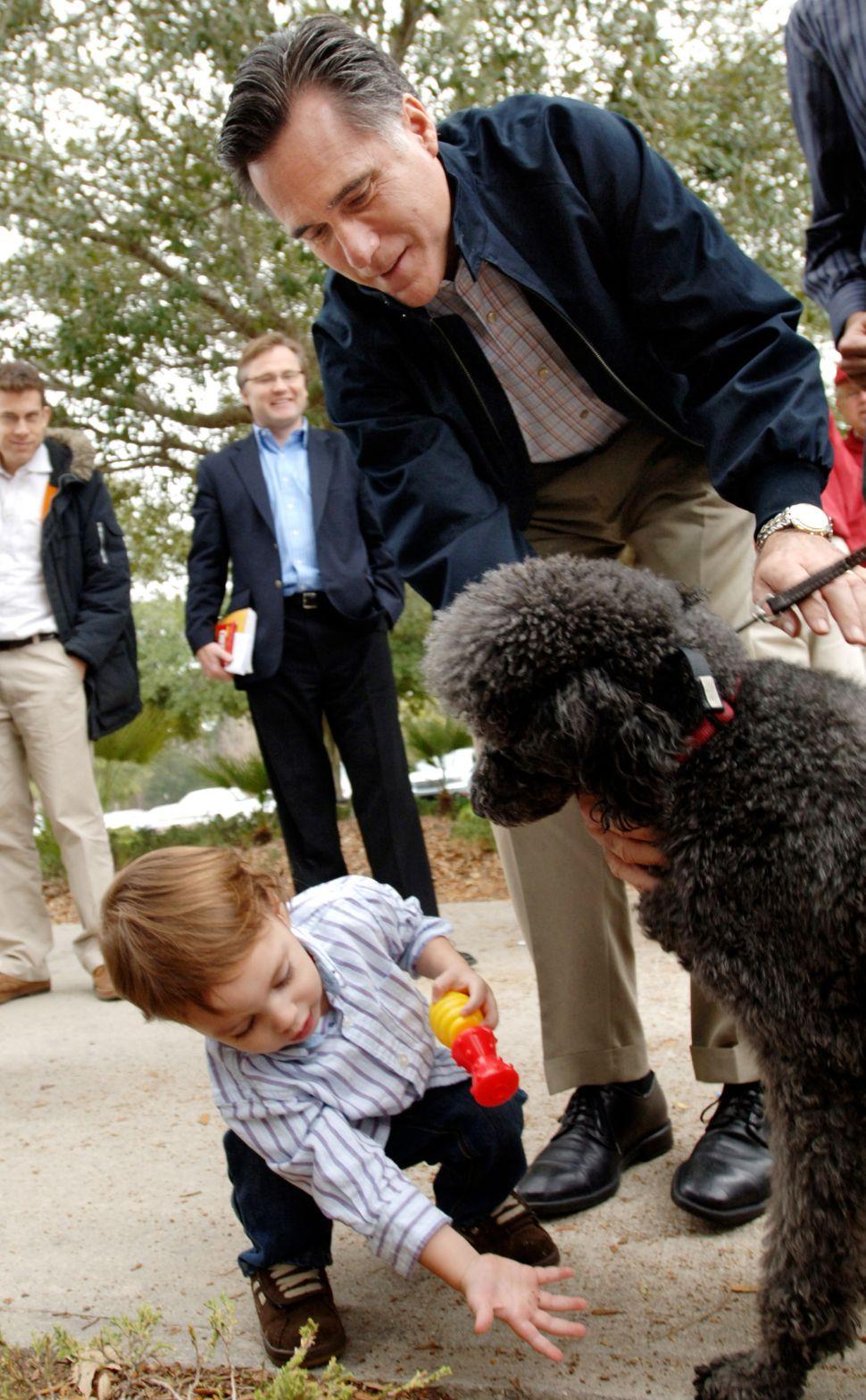 Mitt Romney's Dog Debacle Debated in Oregon Court