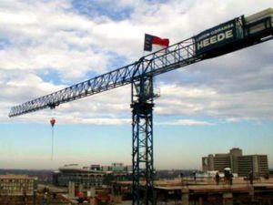 Terror crane