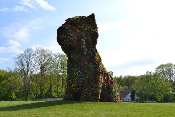 Koons 'Puppy' Blooms at Brant Estate