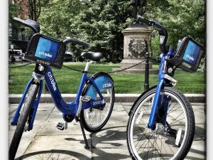 Bike share? No thank you. South Williamsburg couldn't possibly accept.