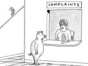 Elaine's cartoon, finally in the 'New Yorker'