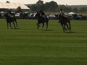 Polo on Saturday afternoon in Bridgehampton