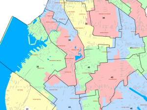 The proposed lines for a segment of Kings County.