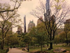 Hello, Central Park.