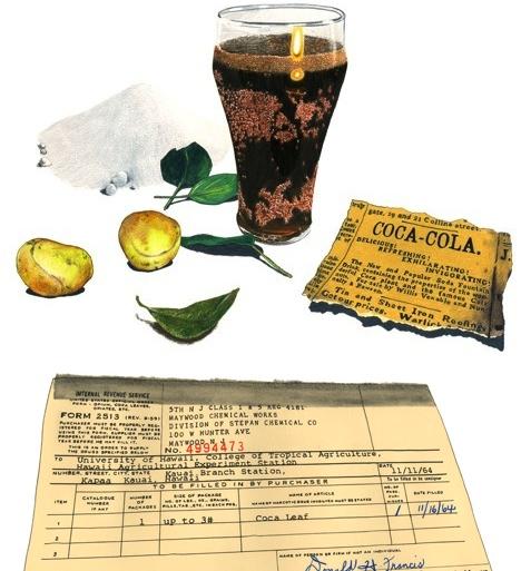 'A Secret History of Coffee, Coca & Cola'