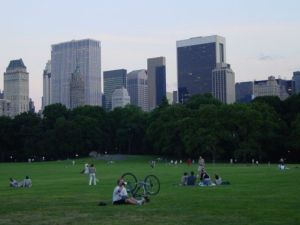 You'd better get your fill of Central Park's Great Lawn on Wednesday morning.