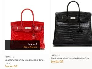 If you have a spare $54,000 to spend this holiday season (Gilt.com)