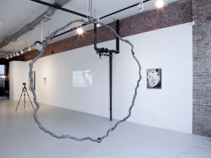 Installation view. (Courtesy Simone Subal Gallery)