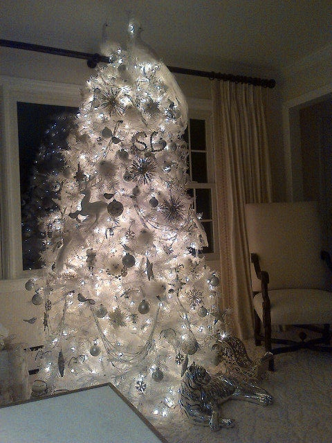 Governor Cuomo's Magnificent Christmas Tree