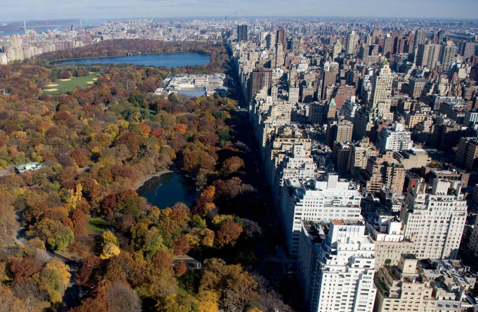 Teenagers Take to Central Park for Monday Morning Crime Spree