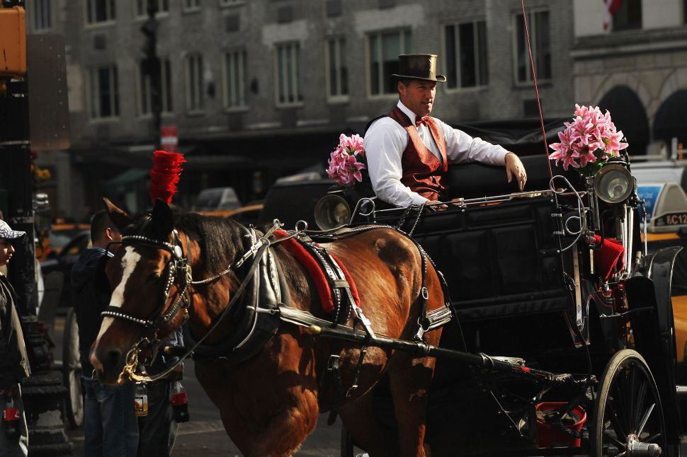 Poll: New Yorkers Want Horse-Drawn Carriages to Stay