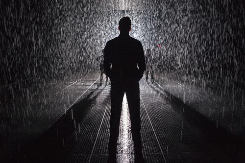 Eye of the Storm: Inside MoMA's Rain Room