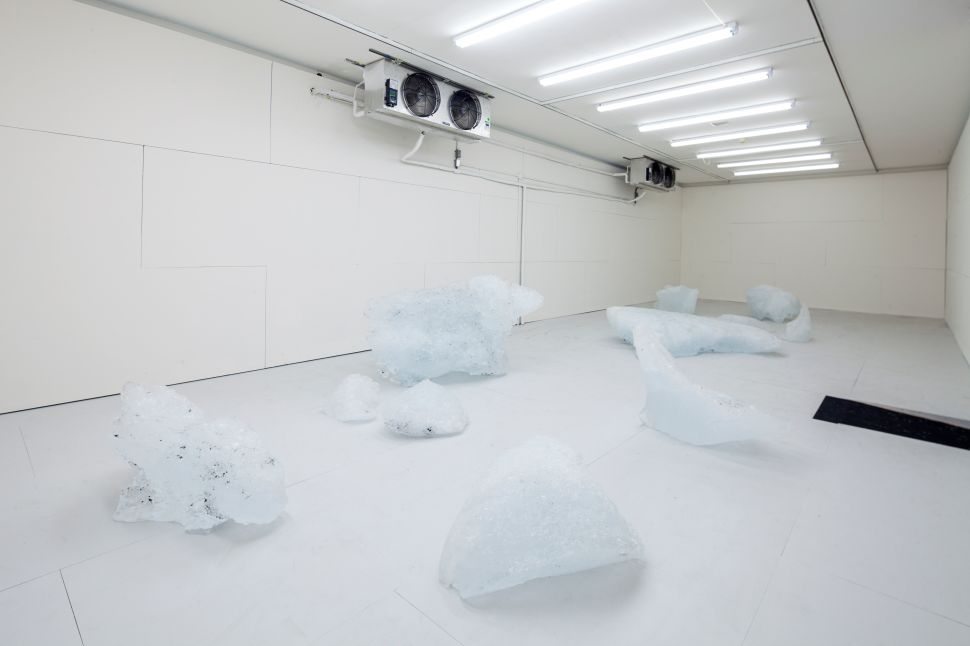 'Expo 1: New York' at the Museum of Modern Art, MoMA PS1 and the VW Dome 2