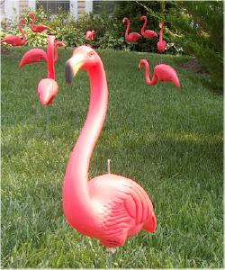 We Don't Want to Live in a City Where an Inflatable Pool Filled with Fake Flamingos Is Illegal