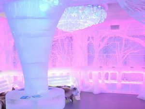 The Central Park Room at Minus 5 Ice bar (Minus 5).