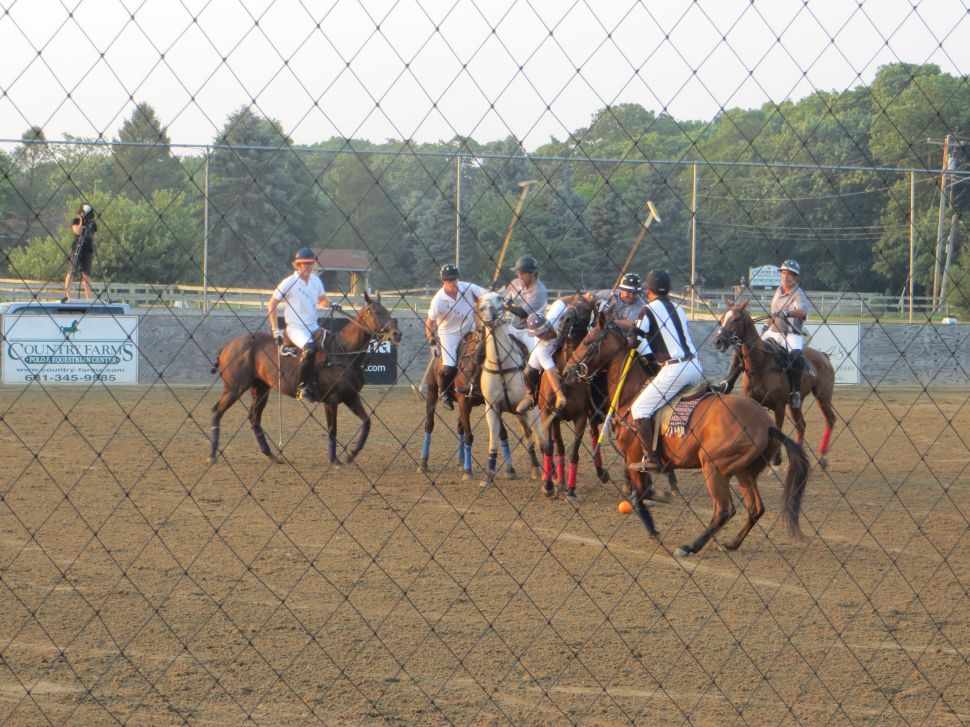 Blood Sport: Welcome to the Jungle of Arena Polo
