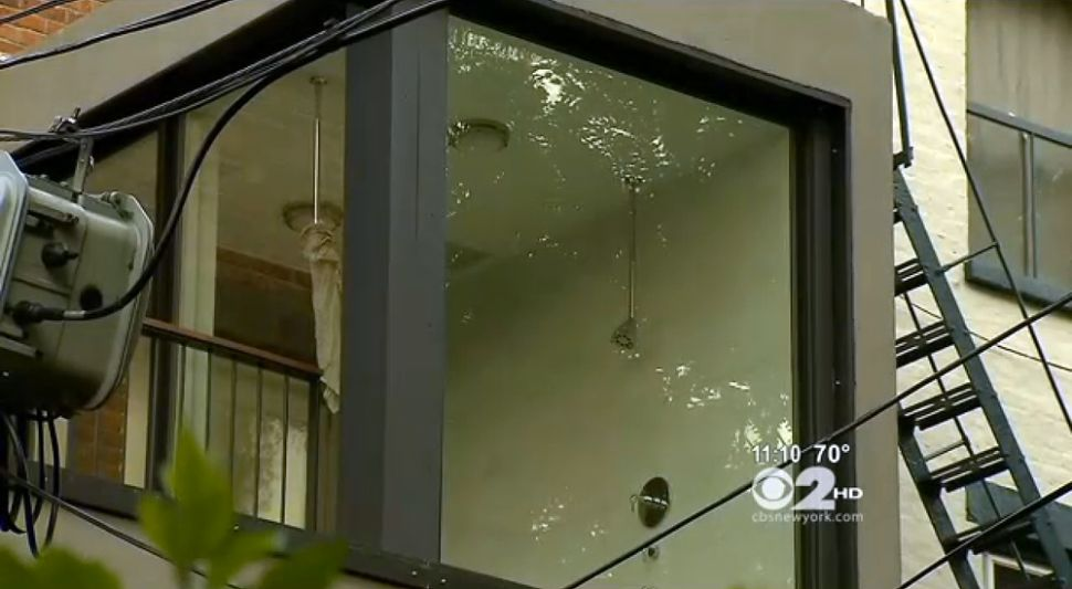 Wet, Wild and Weird: Cobble Hill Peepers Freak Out Over Windowed Shower