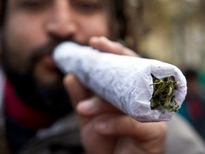 A large joint. (Photo: Martin Bernetti/Getty Images)