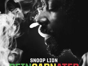 Unless you're Snoop, refrain.