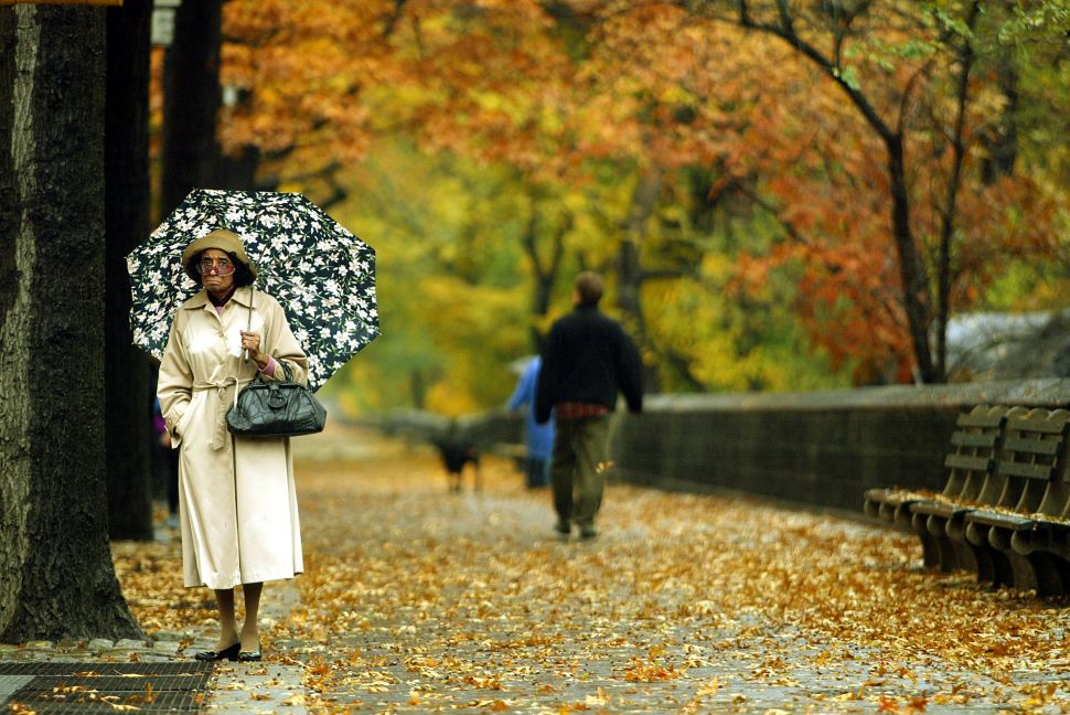 7 Lesser-Known Autumn Facts
