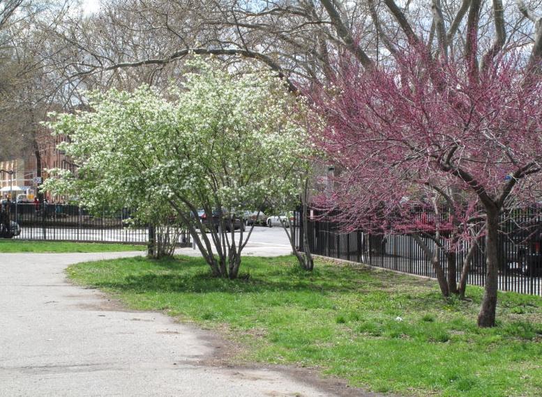 McCarren Park Makes Room for More Hipster Recreation, Less Parking