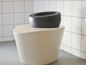 The Wellbeing Toilet. It looks... ploppy. (Photo: blogs.arts.ac.uk/)