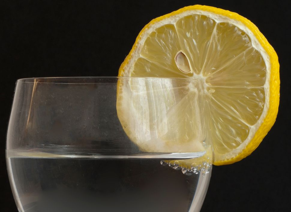 Science Says Germs Are Hosting a Lemon Party in Your Drink