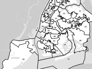 New York State Senate districts. (Photo: LATFOR)