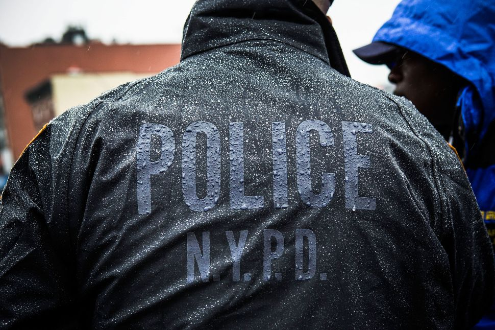 Afternoon Bulletin: NYPD Slowdown Costing City $10M Per Week, Grizzly Bears and More