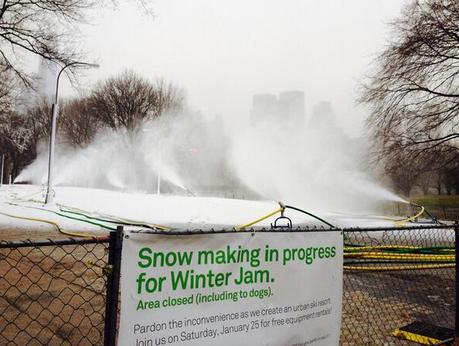 Let It Blow? Artificial Snow Machines Blanket Central Park Mid-Storm