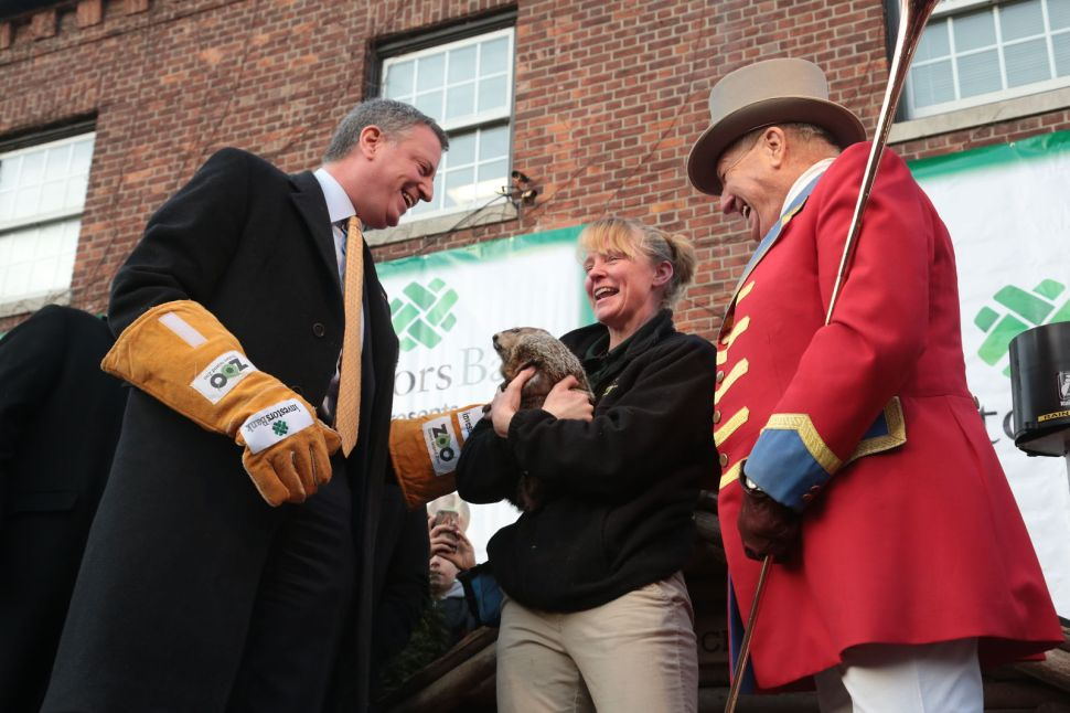 After Past Groundhog Woes, de Blasio Vows 'No Harm Will Befall' Him or Rodent