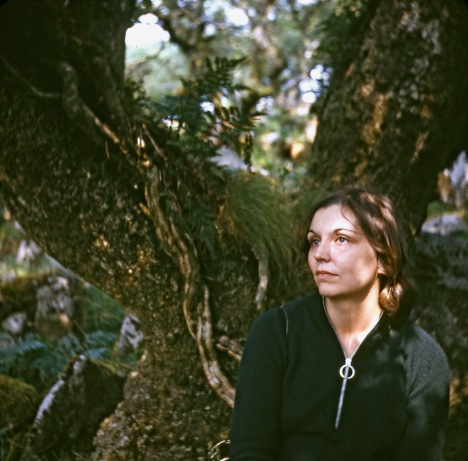 Nancy Holt, Visionary Land Artist, Dies at 75