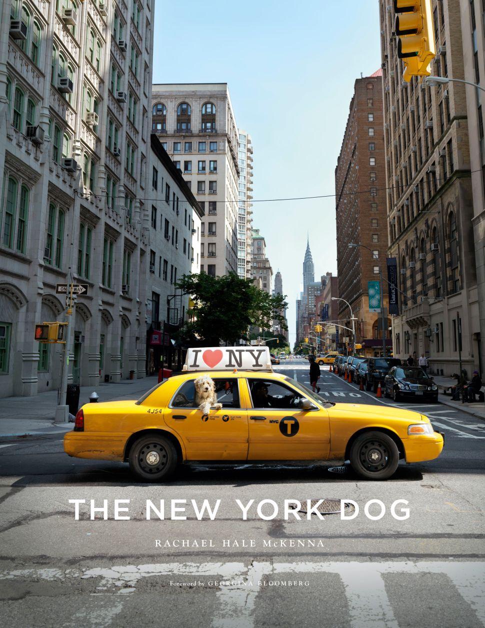 Humane Society Toasts <em>The New York Dog</em>