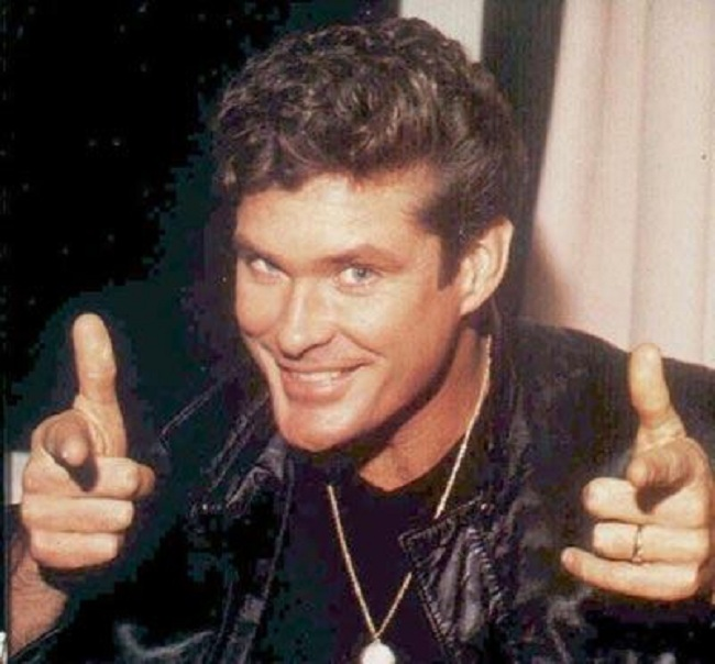 Is the World Ready for the David Hasselhoff Mini-Series, 'Hoff the Record?'