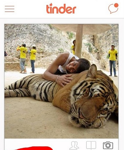 New York's Death Tax and Selfies With Tigers