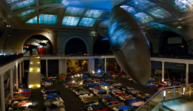 """A Night at the Museum"" (Photo courtesy of AMNH)"