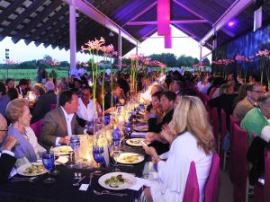The Parrish Art Museum Midsummer Party in Water Mill. (Photo: Courtesy Patrick McMullan)