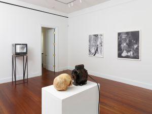 Installation view 2014. (Courtesy the artist/ Blum & Poe gallery)