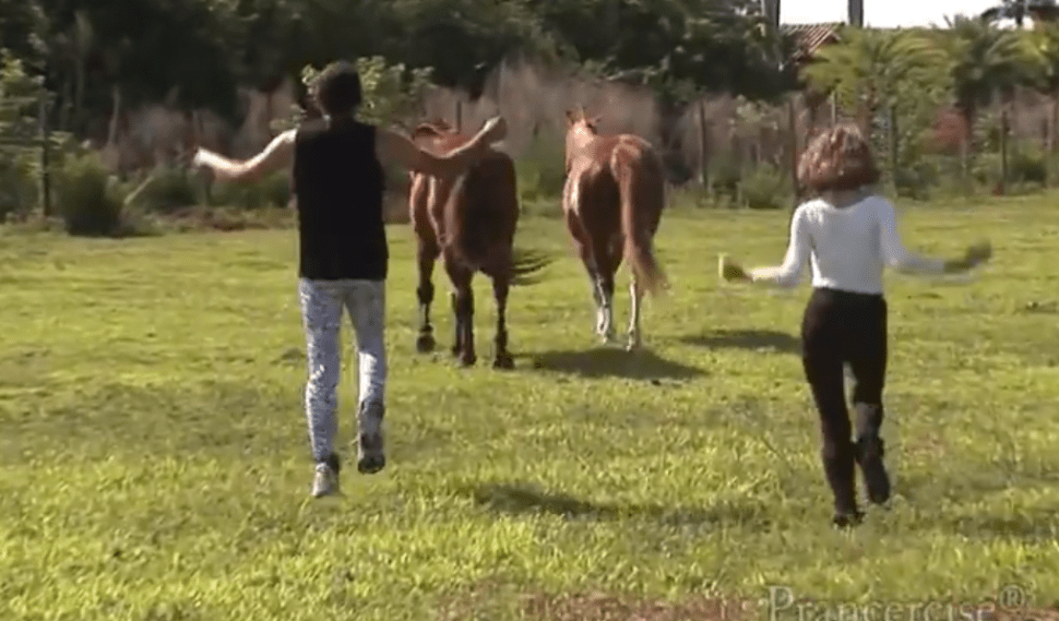 'Prancercising' Is Terrifying for Both Humans and Horses