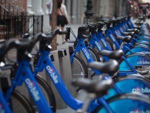 Bike share. (Amanda Cohen/the Observer.)