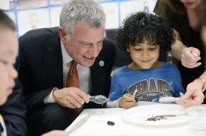 Mayor Bill de Blasio visits a pre-K classroom. (Photo by Susan Watts-Pool/Getty Images)
