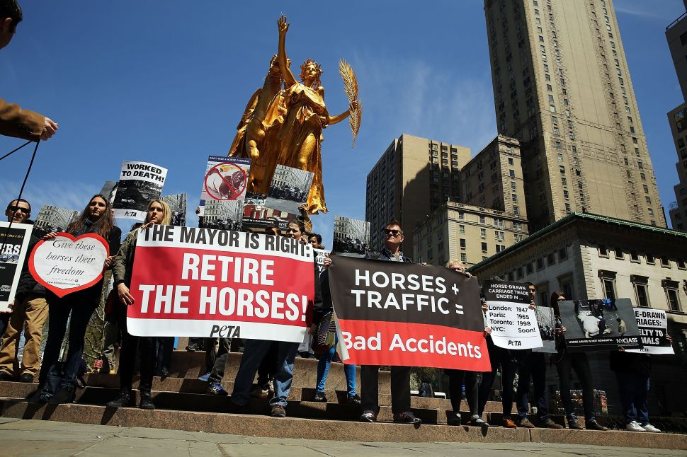 De Blasio Plans to 'Get Involved' When Council Considers Carriage Horse Ban