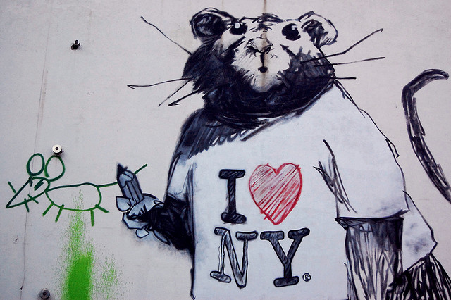 New York Is Losing Its Battle Against Rats