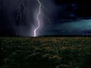 Walter De Maria's The Lightning Field (Courtesy Dia Art Foundation)