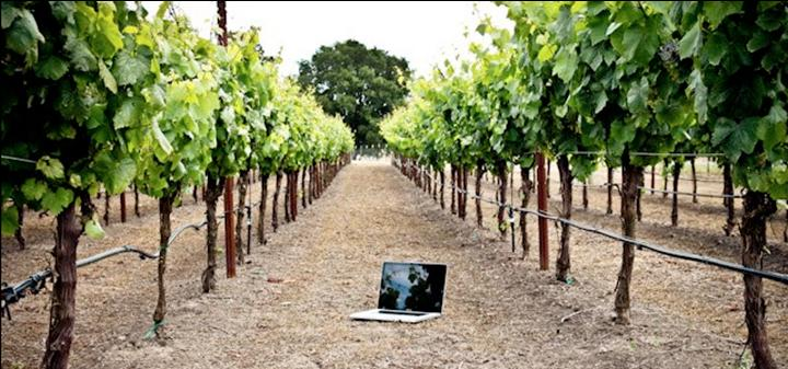 Buying Wine Made Easy, A Napa Valley Tech Entrepreneur Shows Us How