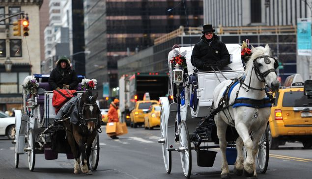 Two horse-drawn carriages are ridden on Central Park West (Photo: Stan Honda for AFP/Getty Images).