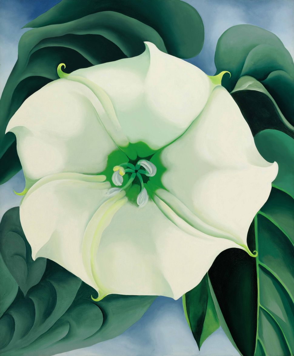 Sotheby's $44.4M Georgia O'Keeffe Shatters Auction Record for Work by a Female Artist